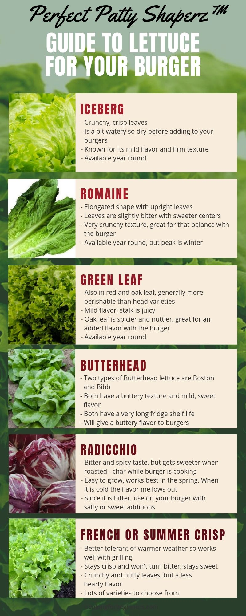 Types Of Lettuce For Burgers Infographic The Perfect Patty Shaperz